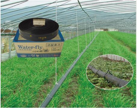 韩国信农灌溉高设70(喷幅3米)...